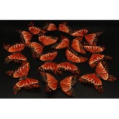 Бабочки коричневые из перьев для декора 12 штук.